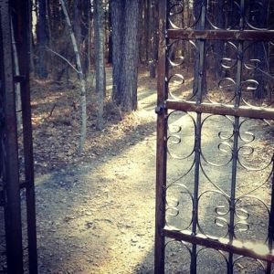 Gate opening onto Eerieville's trail