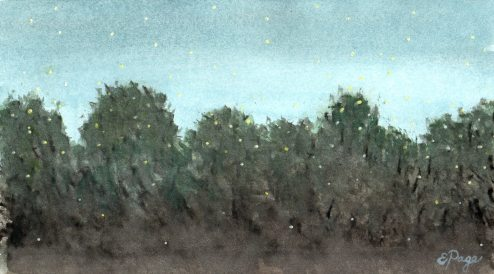 "Fireflies Becoming Stars 5""x9"" watercolor on paper"