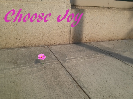 Choose Joy Sidewalk Flower