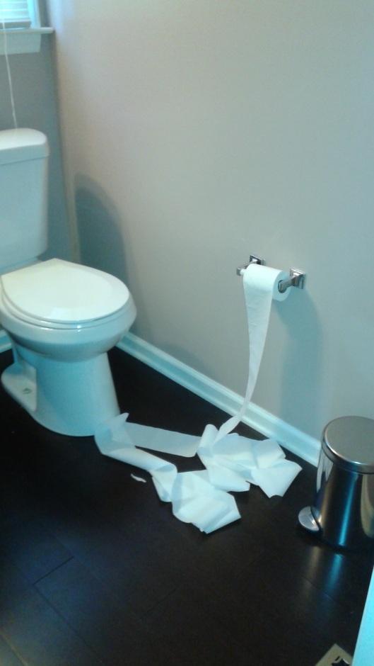 Dizzy toilet paper