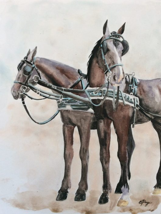 Carriage horses watercolor step 3
