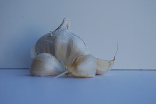 garlic 10.jpg