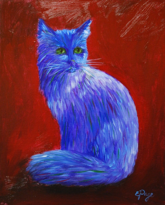 Blue Longhaired Cat.JPG