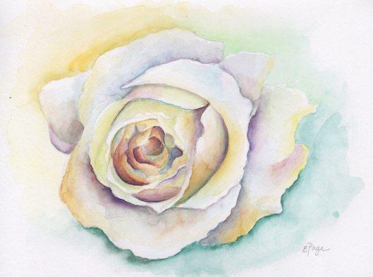 Vendela Rose.JPG