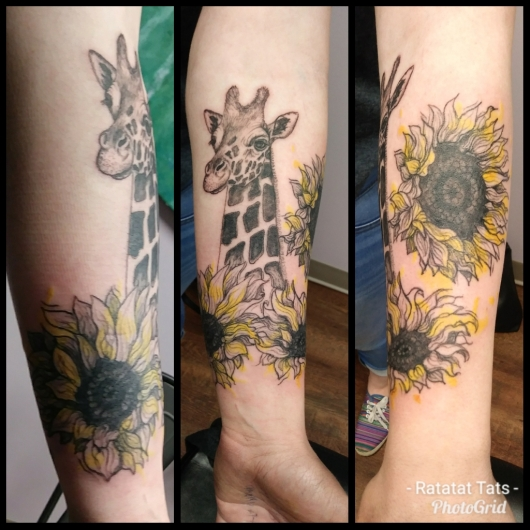 Taylor's giraffe and sunflowers color 2