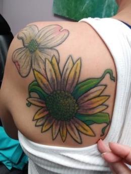 Diana Davis sunflower and dogwood_compressed