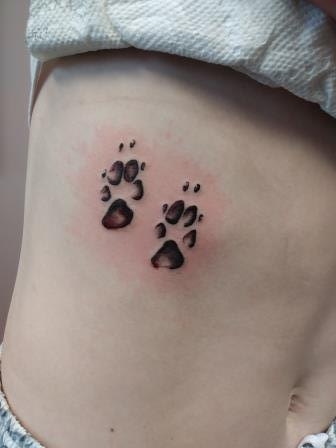 dog prints - Emily Durham