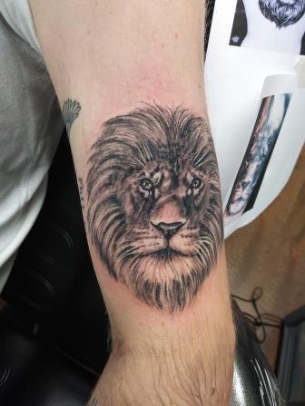 Lion - Jordan Thomas