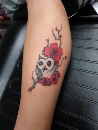 owl - Veronica Lauvray